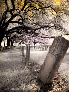 Chalmette Louisiana Cemetery