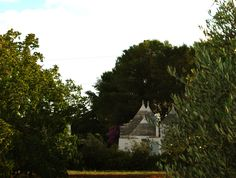 Trullo Fumarola is set within 1 hectare of land.