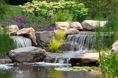 Fish & KOI Pond Projects-Berks|Reading|PA|Pennsylvania - Signature Pond & Patio