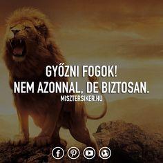 Ne add fel csak azért, mert volt egy rossz szériád! 💪 . . . . . . . . #misztersiker #onlinementor #vállalkozás #magyar #idezet #imagyar #idezetek #magyaridezet #ikozosseg #siker #motiváció #kitartás #sikereselet #célok #idezetek #hungarianblogger #olvasnijo #inspiracio #blog #tudatosság #változás #fejlődés #boldogság #élet #önfejlesztés Never Give Up, Movies, Movie Posters, Films, Film Poster, Popcorn Posters, Cinema, Film Books, Film Posters