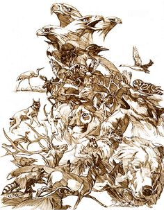 Prayer For The Wild Things  Bev Doolittle I have this one!!  This is hidden in the color version..  Just amazing artist