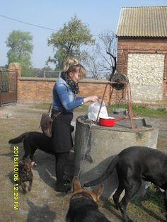 Gawęda jak nasze psy i koty: Obowiązki gospodarza i gospodyni a zima