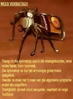 Brannas... #BrandewynhetnieBriekenie Afrikaanse Quotes, Goeie Nag, 60th Birthday Party, Twisted Humor, Funny Quotes, Jokes, Terry Pratchett, South Africa, Laughing