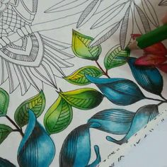 coloring ideas for leaves --> For the most popular adult coloring books and writing utensils including gel pens, colored pencils, watercolors and drawing markers, go to our website at http://ColoringToolkit.com. Color... Relax... Chill.