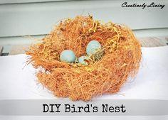 DIY Bird's Nest 2