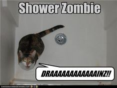 Shower Zombie