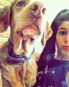 Mi amor  #forever #love #dog by indiiia93