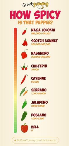 Find how spicy are the chilly peppers. The Scoville Scale of Hotness infographic that will get you handy if you want to prepare a delicious hot and sweet chilly paper sauce.  Find our favorite family recipe for the chilly sauce for meat and burgers. #chilly #recipe #cooking #infographic #food #cooking Easy Tart Recipes, Dinner Recipes Easy Quick, Vegetarian Recipes Easy, Spicy Recipes, Side Dish Recipes, Low Carb Recipes, Free Recipes, Chicken Recipes, Homemade Chili