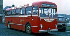 Bus Coach, Red Bus, Busses, Coaches, Newcastle, Vintage Cars, Dream Cars, Transportation, Trucks