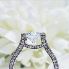 Now that's how you show off a gorgeous Michael M engagement ring!