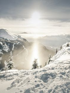 Shine by Nicholas D. Yee ~ Rocky Mountains of Lake Louise, Alberta.