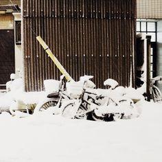 Hello Sandwich, Snow In Shimokitazawa!