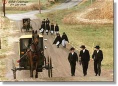 AMISH - Bing Images