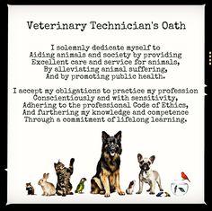 It's National Veterinary Technician Week! Veterinary Technicians are a vital part of the veterinary Care Team. Here is the Vet Tech Oath...