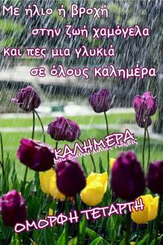 Beautiful Pink Roses, Greek Quotes, Good Morning, Travel Inspiration, Thursday, Wednesday, Cards, Mornings, Logos