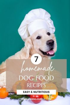 Homemade dog food can benefit your canine companion in a number of ways — especially if you have a pet who suffers from allergies, skin problems, or gastrointestinal sensitivity. Nutrition Guide, Health And Nutrition, Food Recalls, Guide Dog, Best Homemade Dog Food, Skin Problems, Dog Food Recipes, Pup, Easy Meals
