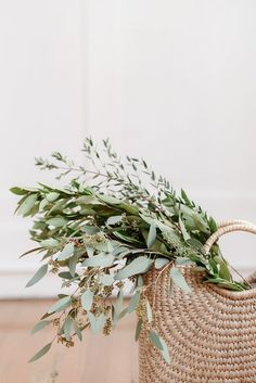 Co Design, Interior Plants, Interior Design, Eco Friendly House, Stationery, Stock Photos, Beautiful, Greenery, Wedding Planners