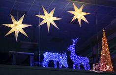 #ColegiosISP se prepara para la #NavidadISP 17. Esta tarde se ha hecho la encendida oficial de luces que anuncian la Navidad. A partir de ahora, cada día, se encenderán para que los niños y los padres podáis contemplarlas y compartir toda la magia de estas fechas. 💫