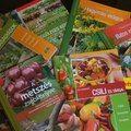 Kiskertünk védelme gyógynövényekkel - Kapanyél Blog, Blogging