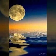 Ночь. Как же я люблю это время суток. Время, когда тебя никто не трогает. Ты никому не нужен. Только ты и твои мысли ☺ ��  Music by Dmitry - All Through The Night.️ This song and the entire album available on saite www.DMITRYMUSIC.com ❤️���� #music #musician #dmitry #dmitry_music #moon #singer #songwriter #artist #girl #boy #man #woman #tbt #friends #photooftheday #russia #instagood #like4like #moscow #fashion #nyc #celebrity #uk #amazing #movie #guy #love #beautiful #radio #followme…