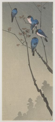 'Bluebirds' Woodblock print by Ohara Koson - 1945 ). Image and text courtesy Freer Gallery of Art and Arthur M. Japanese Artwork, Japanese Painting, Japanese Prints, Ohara Koson, Freer Gallery, Art Japonais, Japan Art, Ink Painting, Woodblock Print