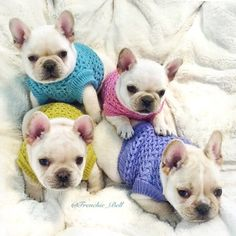 frenchie_bell's photo: Throw Back to our first baby clothes
