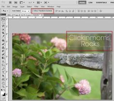 Photoshop Friday | Creating a Watermark Brush ------Awesome tip for saving time when watermarking your images!