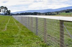 Choosing High Quality Horse fencing options from Diamond Mesh at AU. Click for more information!