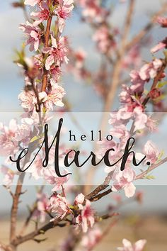 h e l l o march 2 0 1 5 Hello March Images, Hello January, Calendar Wallpaper, Iphone Wallpaper, February Wallpaper, Neuer Monat, New Month Wishes, March Quotes, Monthly Quotes