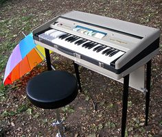 Farfisa Mini Compact in the park : retro designed music store organ69
