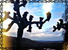 Himmel Remixed #342 - Löwenburg