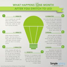 Infographic: What Happens One Month After you Switch to LED - Simple Lighting