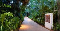 A stone path cuts through the jungle and leads to guest rooms
