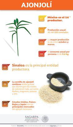 La semilla de ajonjolí contiene ácidos grasos que disminuyen los niveles de colesterol malo, así como fósforo, magnesio, potasio y zinc. SAGARPA SAGARPAMX