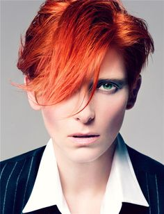 craig mcdean: tilda swinton as david bowie