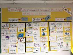 Making Science Fun 5th Grade Science, Science Fun, Science Ideas, Science Lessons, Science Projects, Life Science, Science Bulletin Boards, Interactive Bulletin Boards, Science Classroom