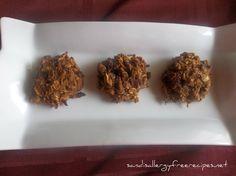 Cranapple Breakfast Cookies (Gluten Free/ Dairy Free/ Refined Sugar ...
