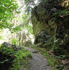 MTB Harz de beste spots voor een mountainbike vakantie