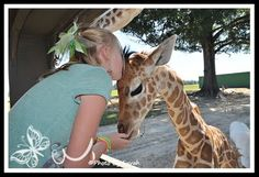 My friend Euvah's grandaughter at the Global Wildlife Center in Louisiana.  Isn't that adorable!!!!