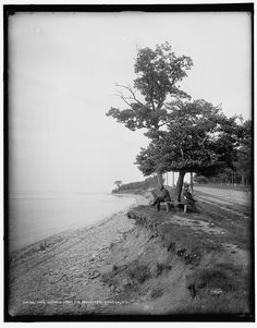Lake Ontario from the boulevard, Oswego, N.Y., circa 1890 - 1901. (Library of Congress, Detroit Publishing Company Collection) [via http://9WSYR.com]