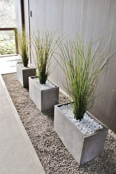 Modern decorative grass in concrete planters in mid-century modern breezeway A beautiful front yard is the calling card of your house. With our ideas, your front garden will also become the inviting flagship of your home, where visitors like to pause fo Front Garden Landscape, Landscape Rake, House Landscape, Landscape Paintings, Modern Front Yard, Modern Porch, Palm Springs Style, Modern Landscape Design, Modern Backyard Design