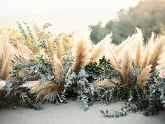 Love this trendy bouquet idea! Cant go wrong with pampas grass and eucalyptus at your wedding. Love this trendy bouquet idea! Cant go wrong with pampas grass and eucalyptus at your wedding. Floral Wedding, Wedding Colors, Fall Wedding, Trendy Wedding, Dream Wedding, Boho Wedding Flowers, Wedding Ceremony, Boho Flowers, Ceremony Backdrop
