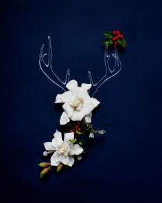 https://www.etsy.com/listing/114746842/holiday-antlers-no-4183?ref=shop_home_active_9