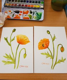 Poppy Watercolor Flowers, Poppy, Art, Flower Watercolor, Poppies, Kunst, Mac, Art Education, Artworks