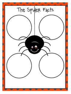 Spider facts worksheet freebie.