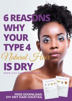 6 reasons natural hair is dry