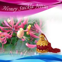 Honey Suckle Attar, Honeysuckle oil is excellent in aromatherapy and is used to scent candles. It is a high-grade essential oil and known for its long-lasting fragrance. The oil provides a sweet and calming fragrance which is used as an additive to perfume body oils, skin lotions, soaps, potpourri, massage oils and bath oils.