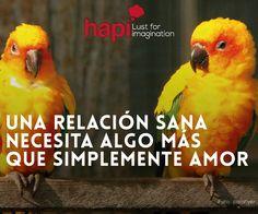#PiensaHapi Recorda estas palabras claves para una relacion sana. Confianza, respeto, comunicacion, incondicionalidad, igualdad, perdon y humor.