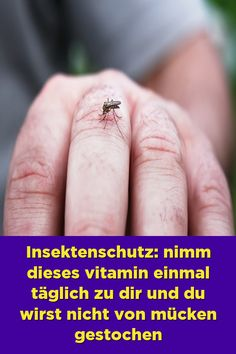 Insect repellent: take this vitamin once a day to you and you will not be bitten by mosquitoes - Gesundheit Health Benefits Of Ginger, Insect Bites, Male Enhancement, Insect Repellent, Diy Skin Care, Herbal Remedies, Healthy Tips, Health And Wellness, Herbalism
