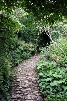 Here are 7 beautiful paths that will make you believe there's a secret garden at the end